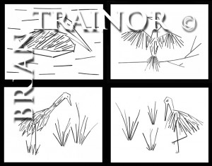 Comp 11x14 Birds